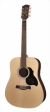 richwood-guitars-d-60-s.jpg