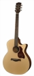 richwood-guitars-g-22-ce-s.jpg